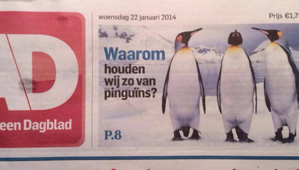 Waarom houden wij zo van pinguïns