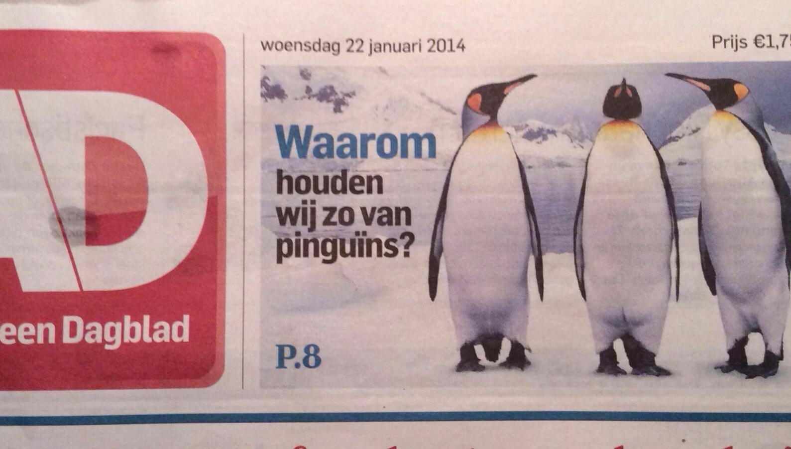 Waarom wij van pinguïns houden
